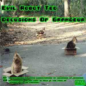 Evil Robot Ted - Delusions Of Grandeur